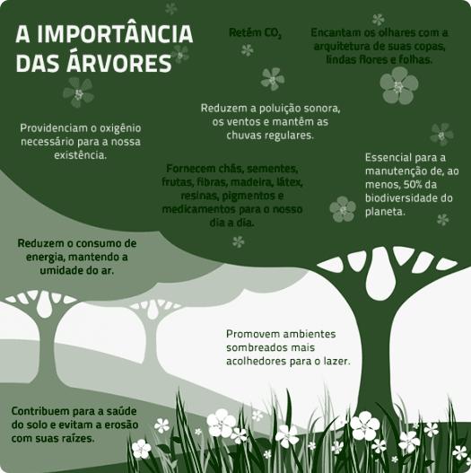Infográfico: A Importância das Árvores