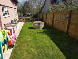 New Garden, all ready for the Summer :)