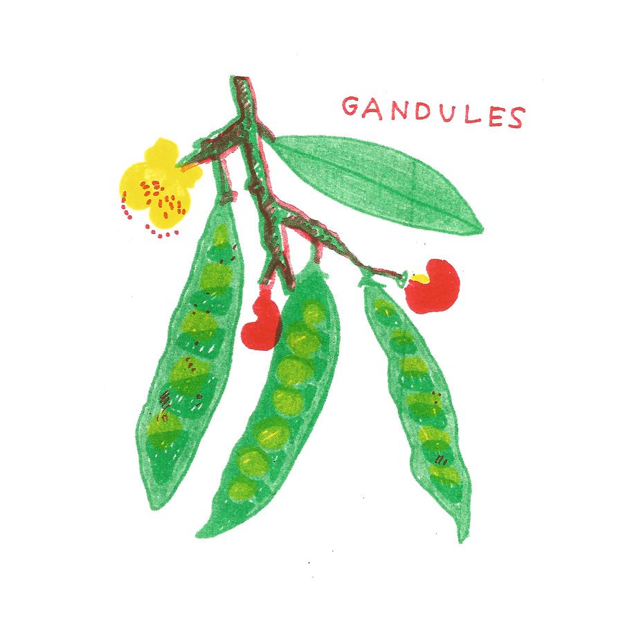 Gandules