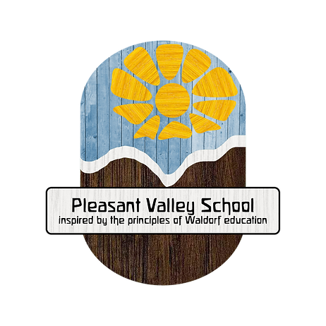 PVS logo - rebrand2.png