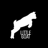 LG logo inverted.png