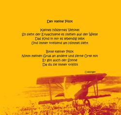 Der kleine Pilot