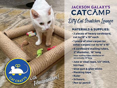 DIY Cat Scratcher.jpeg