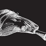 lamb leg.PNG