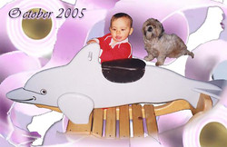 Toddler & Dolphin All New