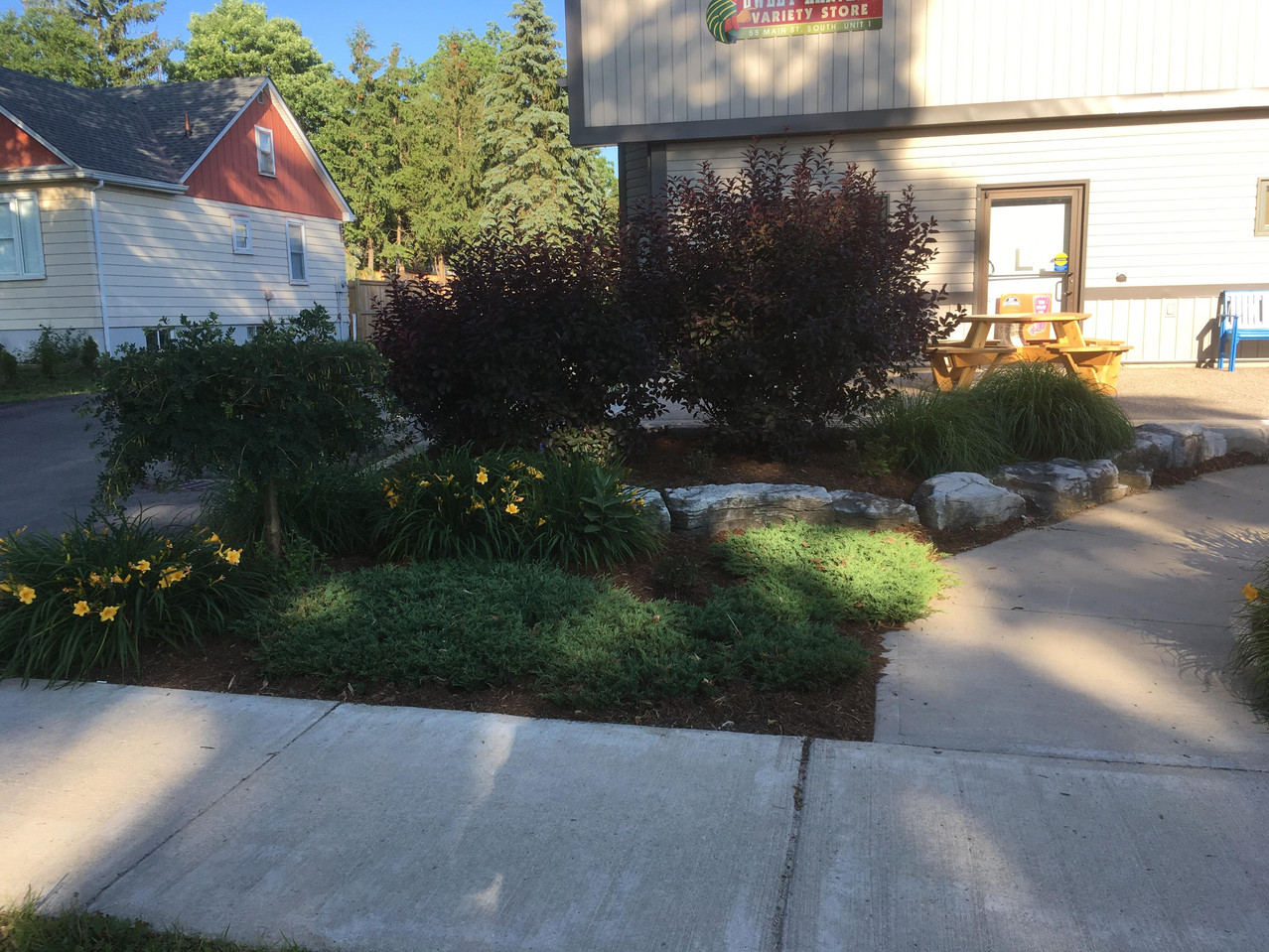 Town Home Landscaped area.