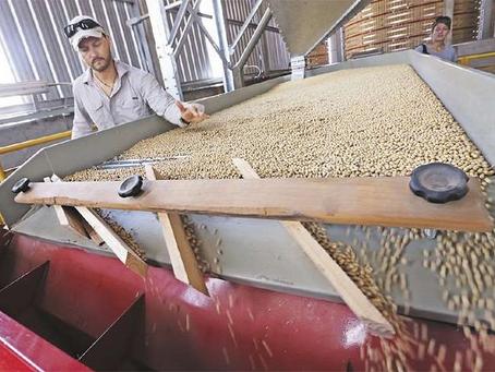 Cepal prevé crecimiento económico de Bolivia en 5,1% para 2021 y destaca el sector agropecuario