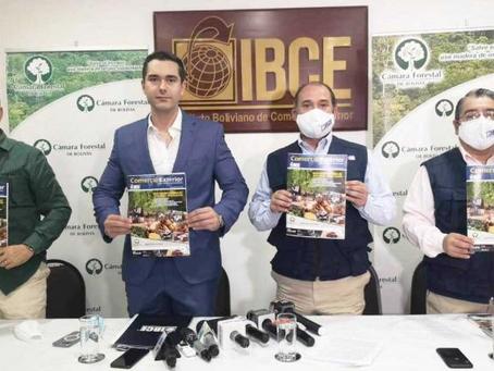 Sector forestal propone cinco medidas para generar más de 400 mil empleos