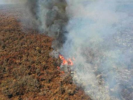 Incendios afectan a más de 150 mil ha y el Gobierno apunta a empresarios