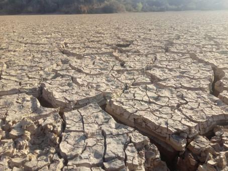 Hay 45 comunidades afectadas por la sequía en Villa MontesHay 45 comunidades afectadas por la sequía