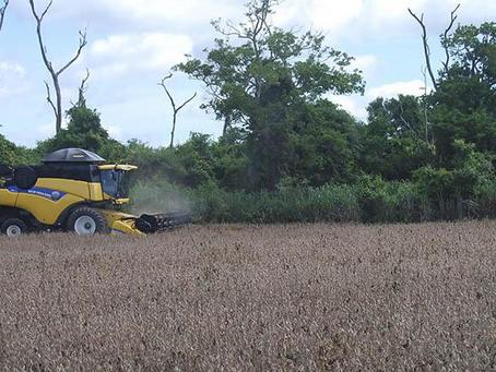 Concluye reglamentación para que los agropecuarios accedan al crédito SIBolivia