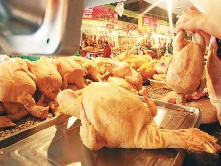 El precio del kilo de pollo baja a Bs 10 y los avicultores culpan al contrabando