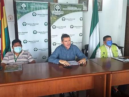Cámara Forestal pide elevar aranceles para la importación de productos de madera