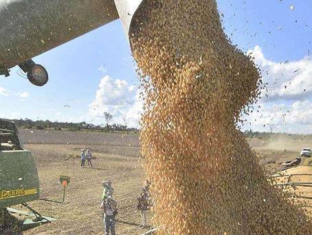 Exportaciones crecen impulsadas por el agro y la minería; la venta de gas sigue cayendo