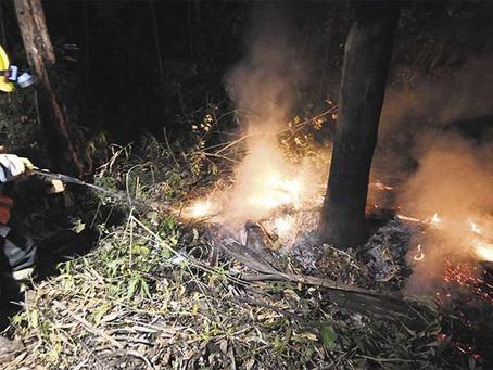 La superficie quemada en Santa Cruz, cuadriplicó a más de 400.000 Ha, a pesar de la prohibicion