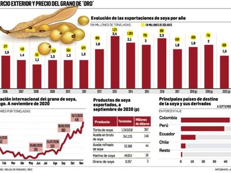 La soya excede los $us 400 la tonelada y el agro pide libertad plena para exportar y utilizar biotec
