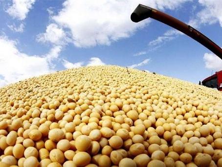 Sectores agropecuarios dinamizan las exportaciones no tradicionales