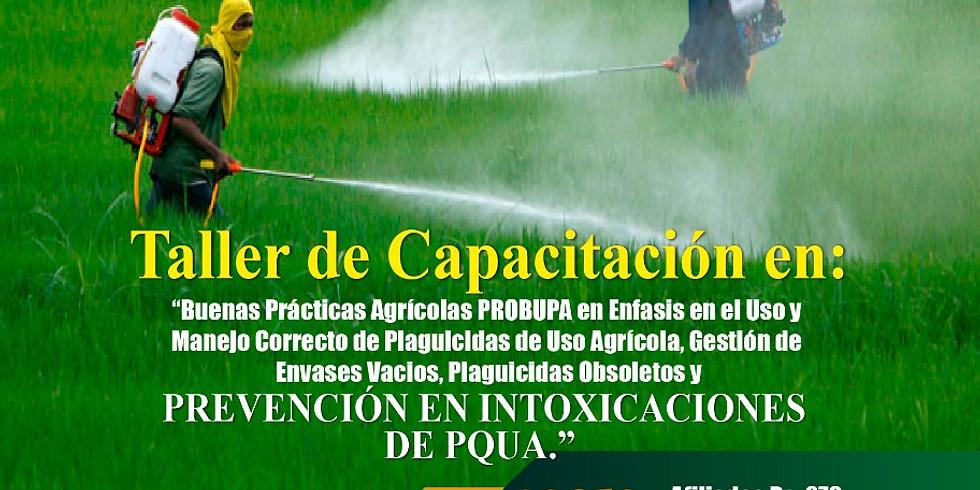 """Taller de Capacitación en: Buenas Prácticas Agrícolas """"PROBUPA"""""""