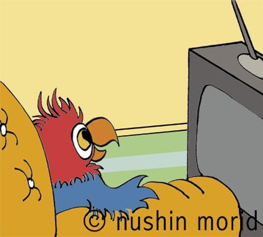 satsang_parrot.jpg