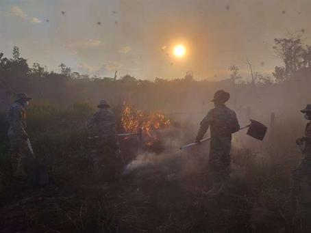 La ABT se querella contra los autores del incendio forestal registrado en San Matías