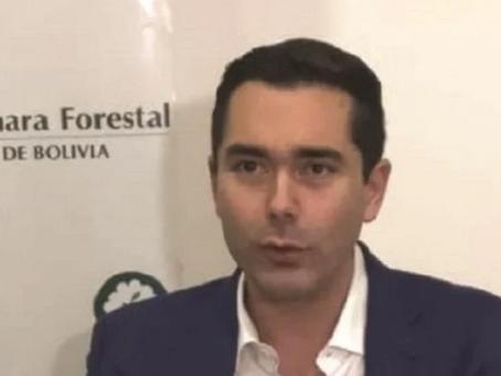 Sector forestal enfrenta crisis y trabaja al 35% de capacidad
