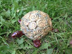 Schildkröte_im_Gras