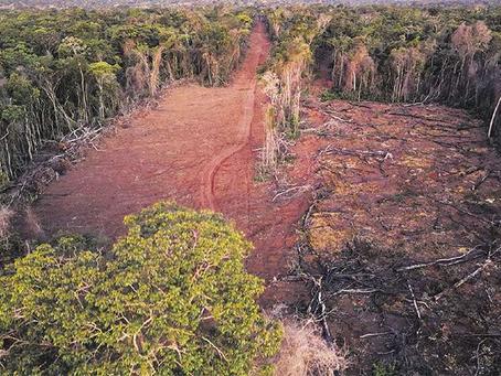 El INRA descarta participar en la Comisión Agraria asegura que no permitirá asentamientos y tráfico