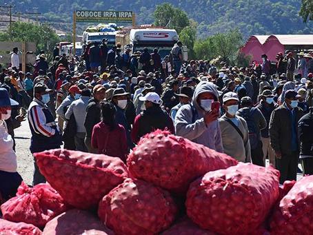 Gobierno propone subir aranceles y poner cupo a hortalizas importadas