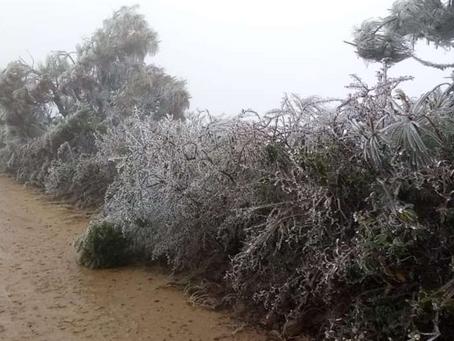 Heladas amenazan a productores de Santa Cruz y experto da consejos para evitar pérdidas