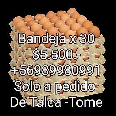Huevos / Paltas Hass / Miel / Papas / Longanizas