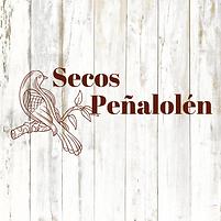 Secos Peñalolén