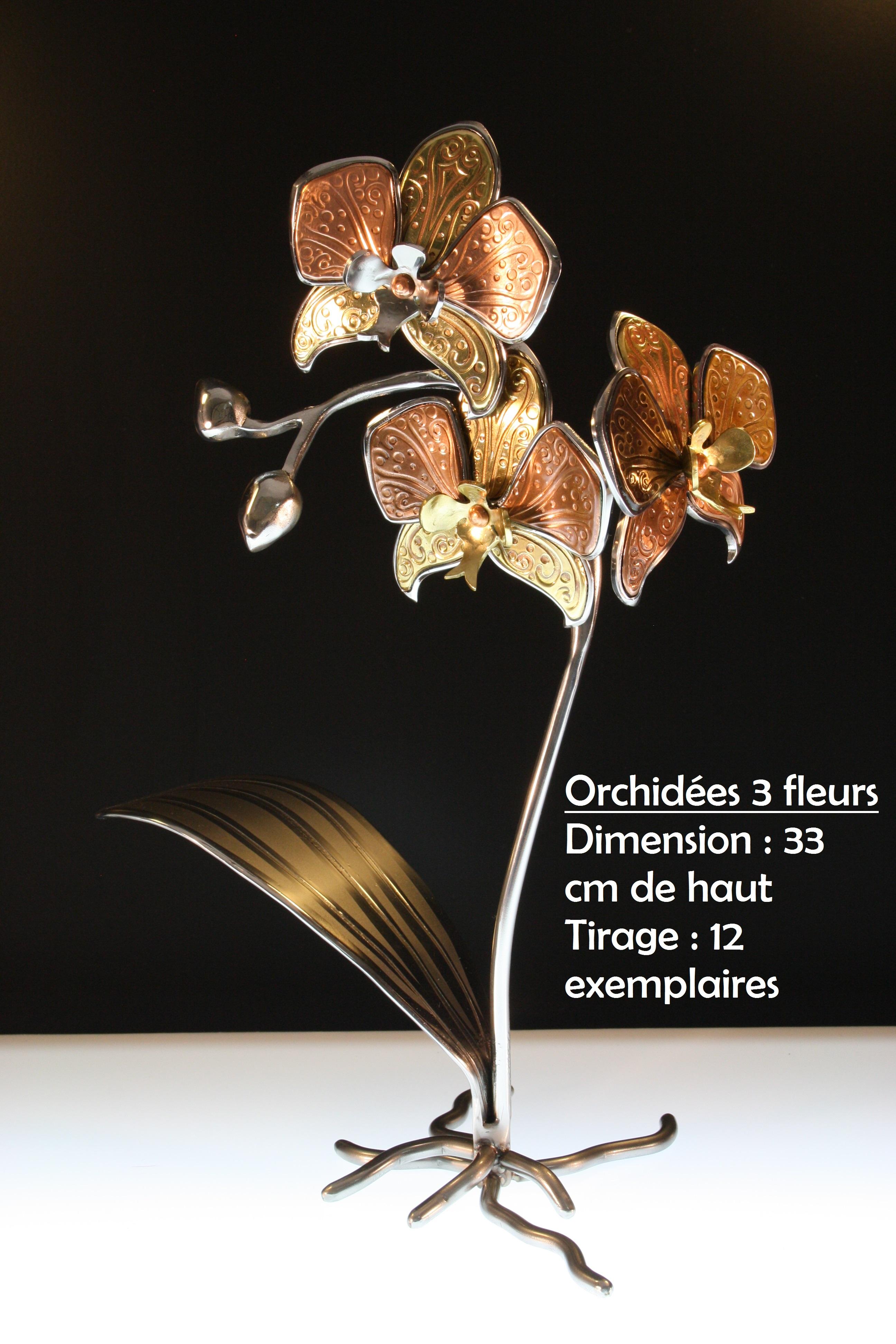 Orchidées_3_fleurs