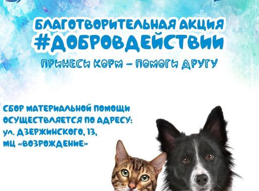 В Солнечногорске пройдет акция «Добро в действии»