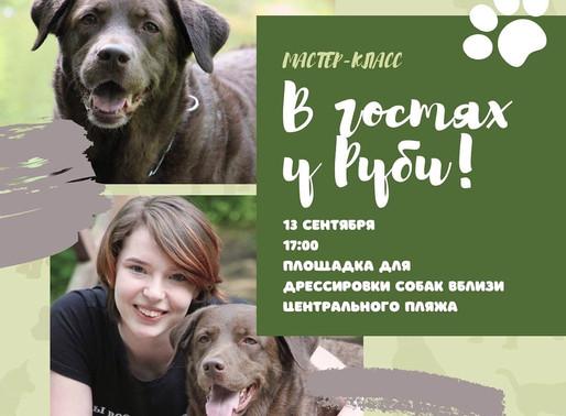 В Солнечногорске проведут мастер-класс по дрессировке собак