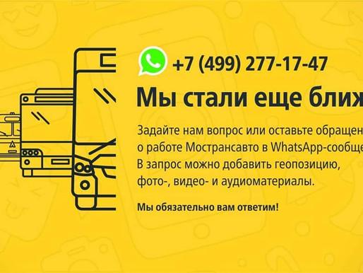Солнечногорцы могут обратиться в «Мострансавто» через WhatsApp