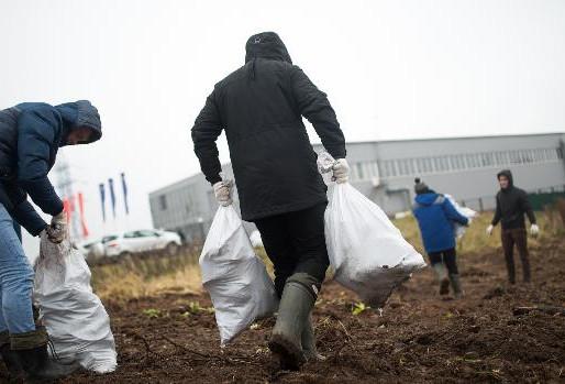 Территорию вблизи официального дилера RENAULT и VOLVO в Солнечногорске готовят к благоустройству