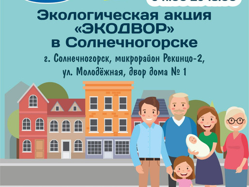 В Солнечногорске вновь проведут акцию «ЭкоДвор»