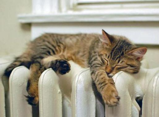 Солнечногорцам рассказали о сроках запуска отопления