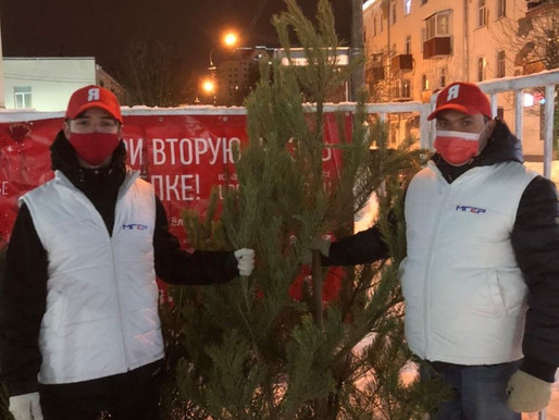 В городском округе Солнечногорск проходит акция «Подари ёлке вторую жизнь»