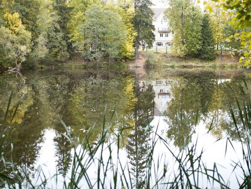 На портале «Добродел» жители Солнечногорска могут отдать свой голос за очистку местных прудов