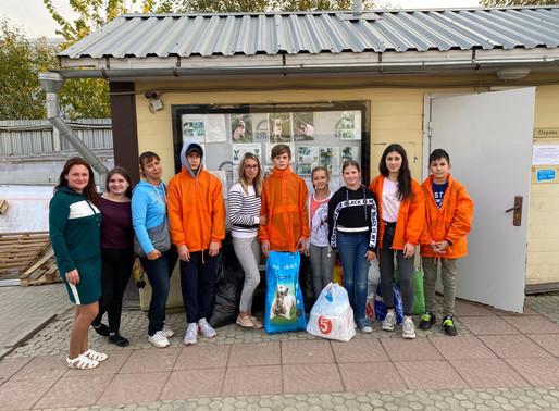 Волонтеры Солнечногорья помогли животным из приюта