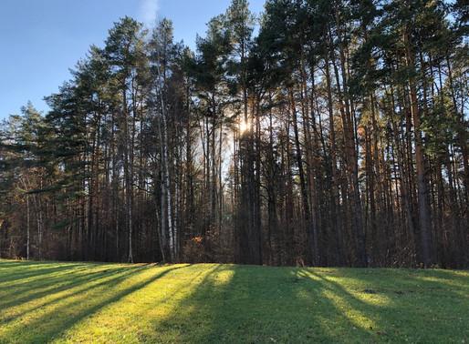 Солнечногорцев приглашают посетить самые таинственные места региона