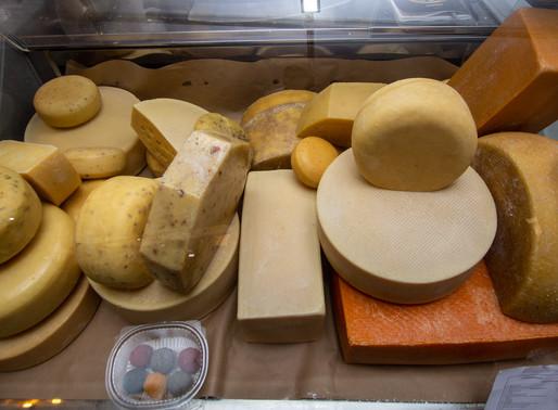 Солнечногорцев приглашают посетить сырный фестиваль