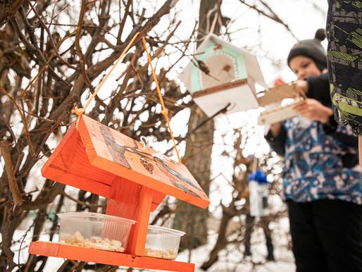 Городской парк Солнечногорска украсили оригинальные кормушки для птиц