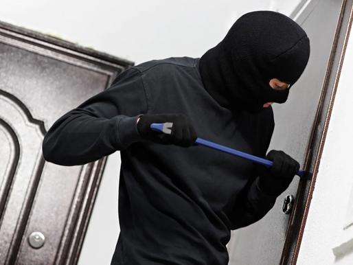 Полицейские Солнечногорска задержали подозреваемого в краже с дачного участка