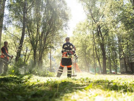 Порядка 1,5 гектаров газонов окашивают коммунальщики Солнечногорья ежедневно