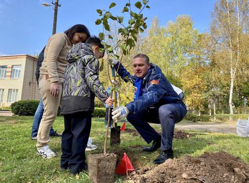 В Солнечногорском детском саду появился яблоневый сад