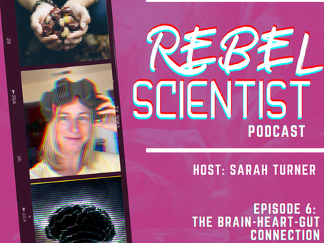 Episode 6: The Brain and The Gut Connect - The Body's Best Friends