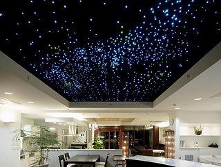 岡三ハウジング 星空照明