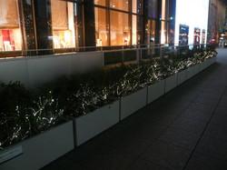 ミッドランドスクエア花壇